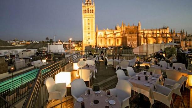 Sevilla tiene un color especial blueginger - Terraza hotel eme ...